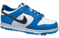 Review: Nike Dunk NG Golf Shoes. Picture. March Madness and Golf Shoes